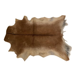 Contemporary Hair on Goat Hide Rug