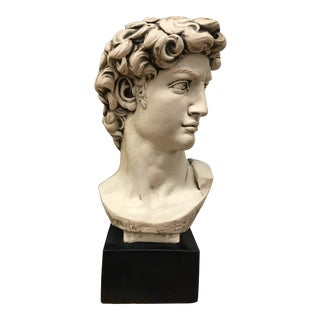 """Sculpture - Vintage Classical """"David"""" Bust in Chalk For Sale"""
