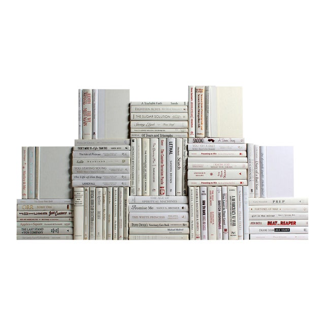 Modern Snowfall Book Wall - Set of 75 For Sale