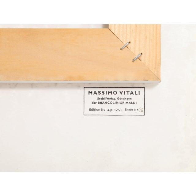 "Contemporary Massimo Vitali, ""Picnic Allee"", Photograph For Sale - Image 3 of 6"