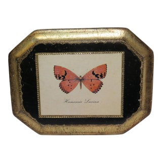 Decopage Style Butterfly Plaque Hanging For Sale