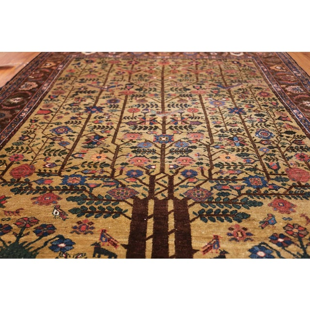Antique Tabriz rugs are distinguished by their excellent weave and by their remarkable adherence to the classical...