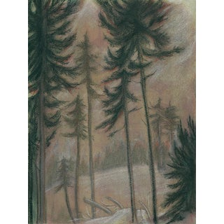 Kathleen Ney Logging Site Mixed Media Drawing For Sale
