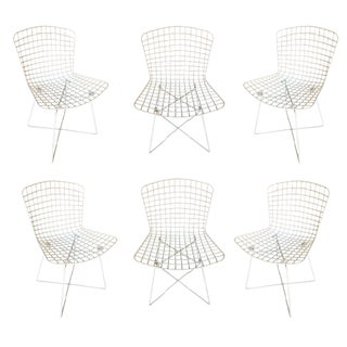 "White Bertoia Steel Wire ""X"" Base Side Chairs by Knoll - Set of 6 For Sale"