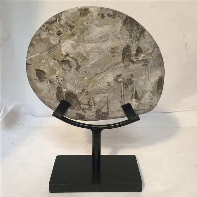 Brown Fossil on Stand For Sale - Image 8 of 9
