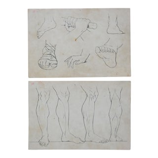 1890s Lithograph Drawing Lessons Hands, Legs & Feet - a Pair For Sale