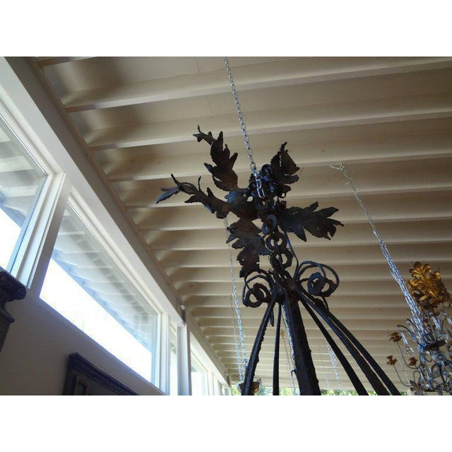 1920's Antique French Wrought Iron Lantern For Sale In Houston - Image 6 of 10