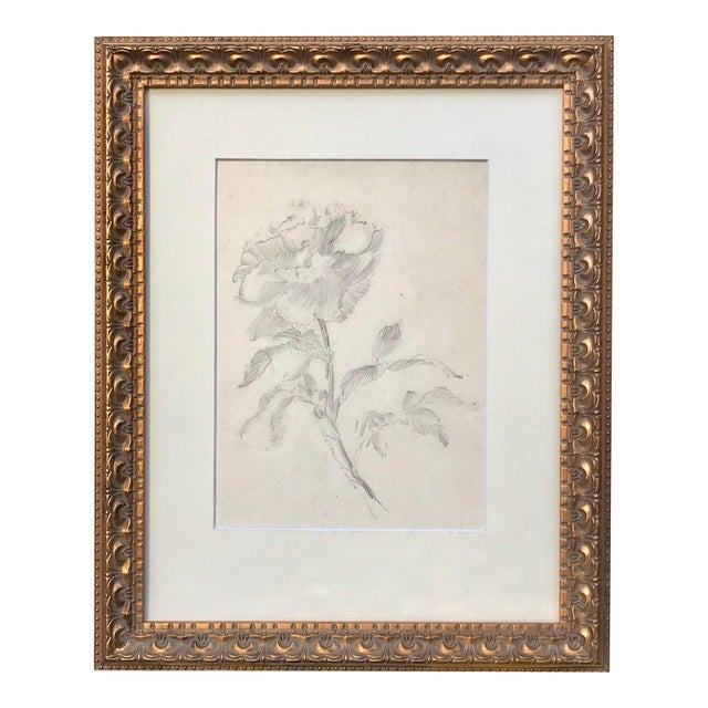 Antique Drawing of a Flower by Charles Sheldon For Sale In New York - Image 6 of 6