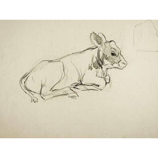 George Baer Pencil Study of Calf Drawing For Sale
