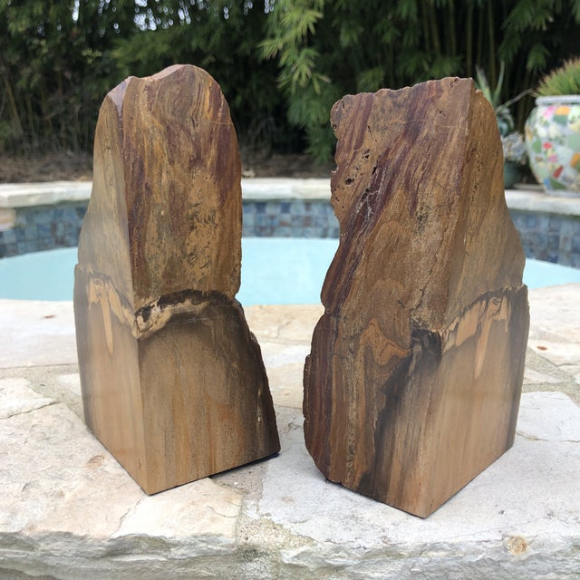 Beautiful Large pair of heavy petrified wood Bookends. Front and sides cut and polished while back kept in natural stone....