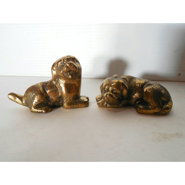 Petite Brass Pups - A Pair - Image 2 of 7