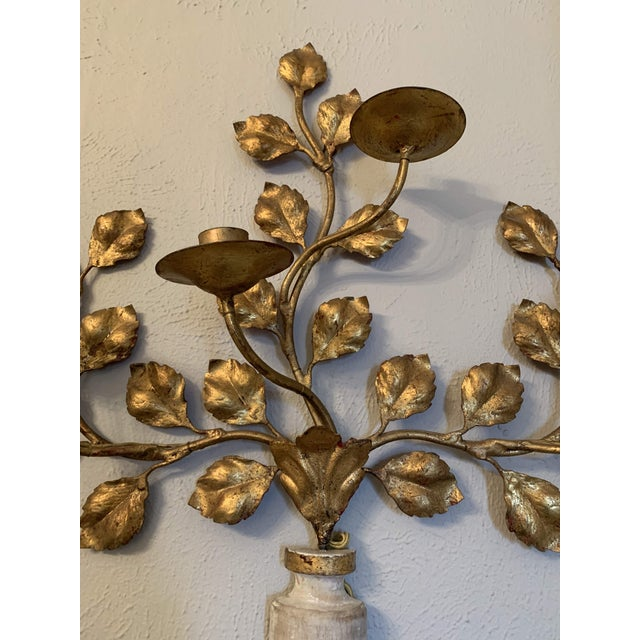 Gold 1950s Italian Carved Vasiform & Leafy Branch Wall Sconce For Sale - Image 8 of 13