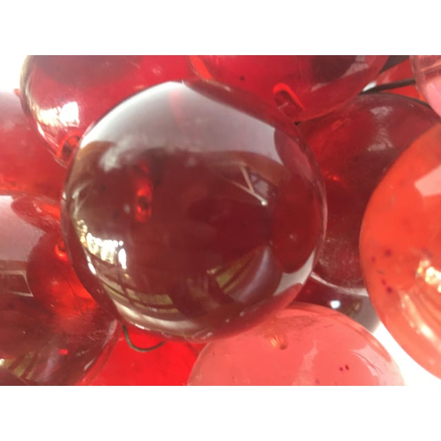 1960s 1960's Bunch of Lucite Ruby Red Grapes For Sale - Image 5 of 10