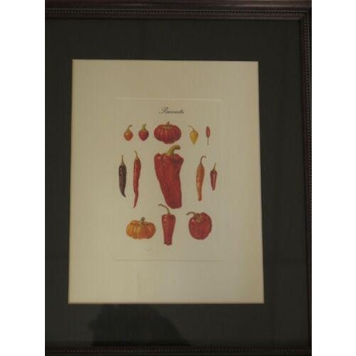 Approx. 10 Years Old Details: Matted and Framed Set of 4 Pictures Wine Theme Condition: Excellent Original Finish and...
