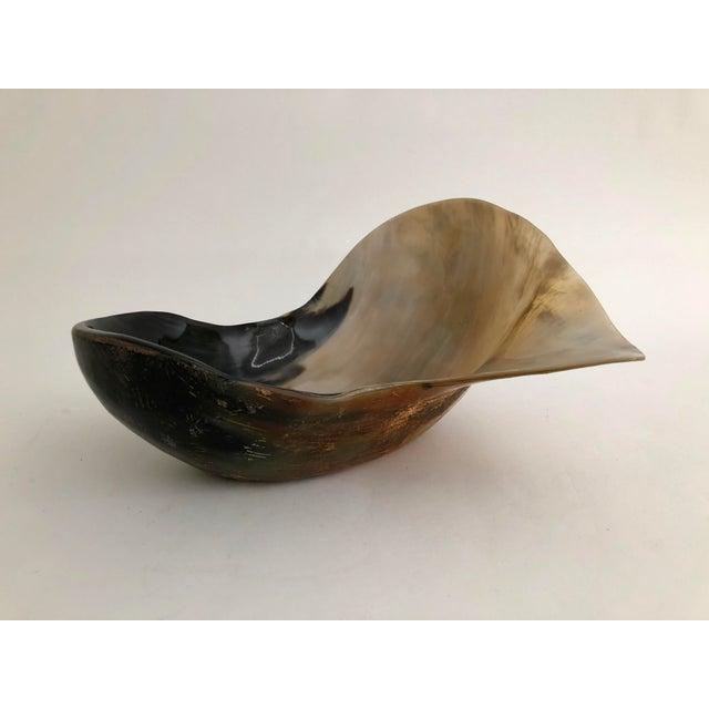 Boho Chic Organic Modern Steer Horn Bowl For Sale - Image 3 of 7