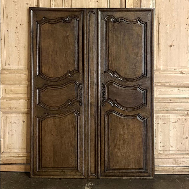Mid 19th Century Pair Plaquards ~ Armoire or Cabinet Doors, 19th Century For Sale - Image 5 of 12