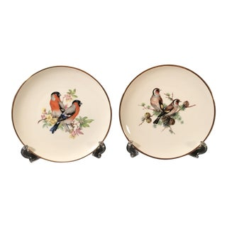 German Porcelain Bird Plates - A Pair