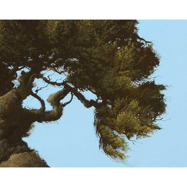 Contemporary 'Veijo Arbol Espanol' by Robert Marchessault, 2019 For Sale - Image 3 of 5