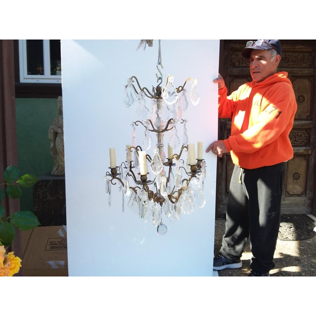 French Bronze and Crystal Cage Style Chandelier For Sale - Image 4 of 13
