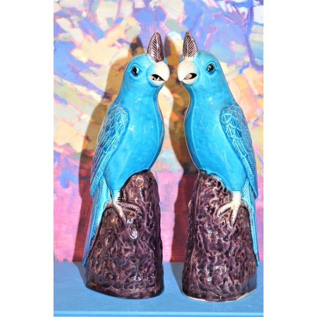 Ceramic 1950s Chinese Turquoise Porcelain Parrot Figurines - a Pair For Sale - Image 7 of 9