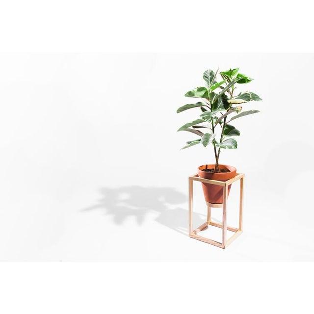 Contemporary Trey Jones Studio Tall Frame Planter For Sale - Image 3 of 6