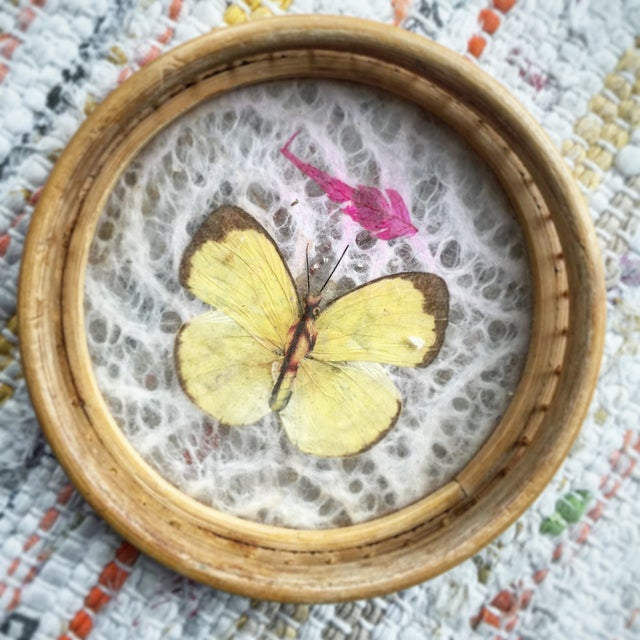 Vintage Butterfly Coasters - Set of 5 - Image 5 of 11