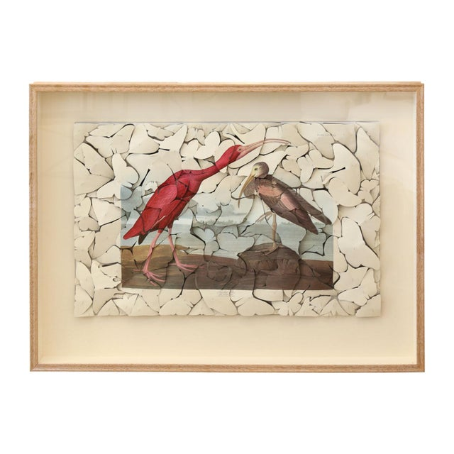 Butterfly Box Scarlet Ibis For Sale - Image 9 of 9