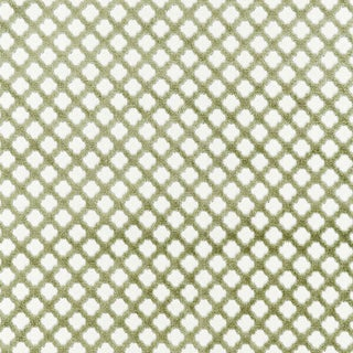 Scalamandre Pomfret Fabric in Green Tea Sample For Sale