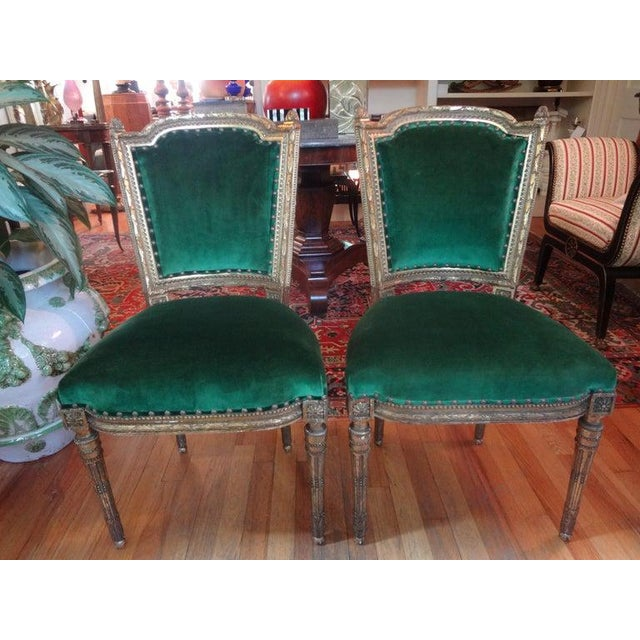 Fabulous pair of mid-19th century French Louis XVI style gilt wood side chairs. These highly detailed French gilt chairs...