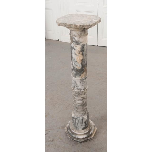 French 19th Century Grey-And-White Marble Pedestal For Sale - Image 4 of 11