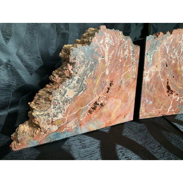 "Gem Grade Petrified Wood Bookends Araucaria ""Arizona Rainbow Wood"" - a Pair For Sale - Image 11 of 12"