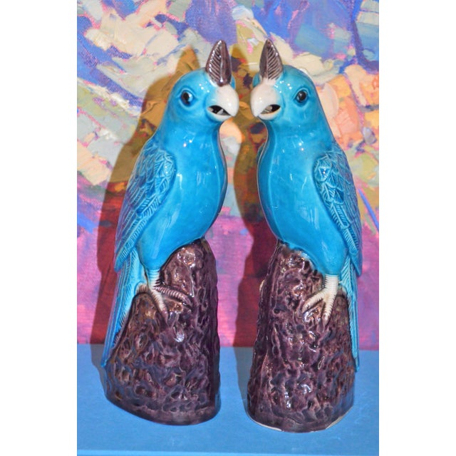 Blue 1950s Chinese Turquoise Porcelain Parrot Figurines - a Pair For Sale - Image 8 of 9
