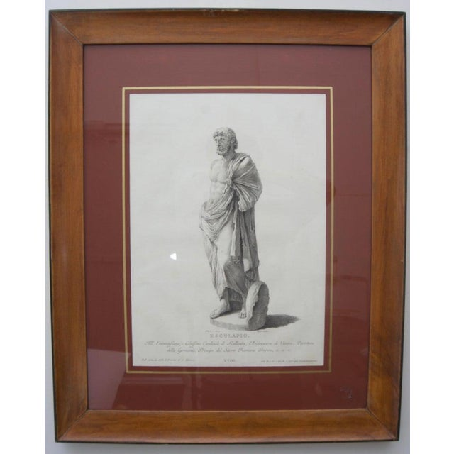 Purple 19th Century Neoclassic Engravings - Set of 4 For Sale - Image 8 of 13
