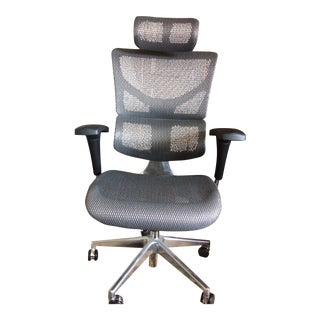 Lumbar Support Office X-Chair For Sale
