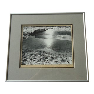 """Framed """"Frozen Pool"""" Photograph For Sale"""