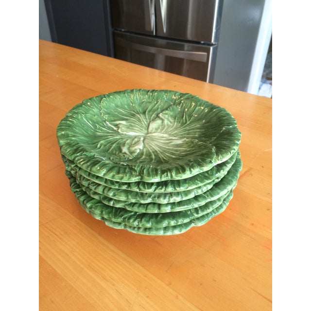 Green Vietri Lettuce/Cabbage Plates, Ceramic, Green - Set of 6 For Sale - Image 8 of 8