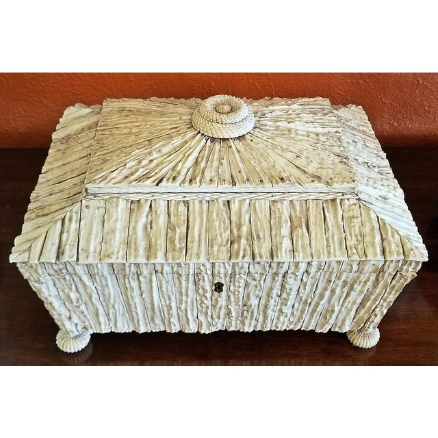 19c Anglo Indian Vizagapatam Stag Antler Horn Sewing Box - Exceptional For Sale In Dallas - Image 6 of 11
