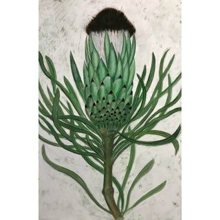 Protea Contemporary Drawing For Sale