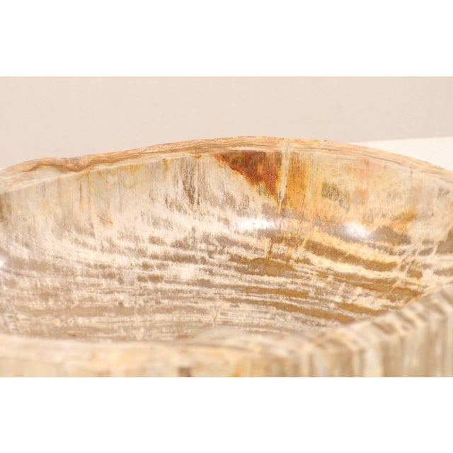 Organic Modern Polished Petrified Wood Sink For Sale In Atlanta - Image 6 of 9