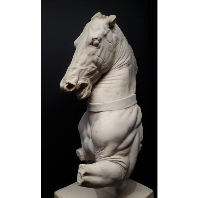 Figurative Monumental Continental Horse Sculpture For Sale - Image 3 of 8