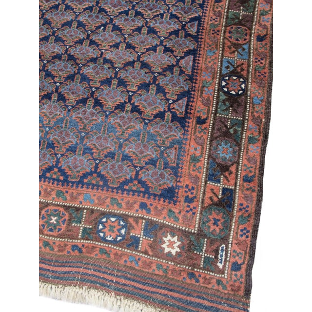 Among the various Baluch weaving groups of eastern Iran and western Afghanistan, repeat shrub patterns of several types...