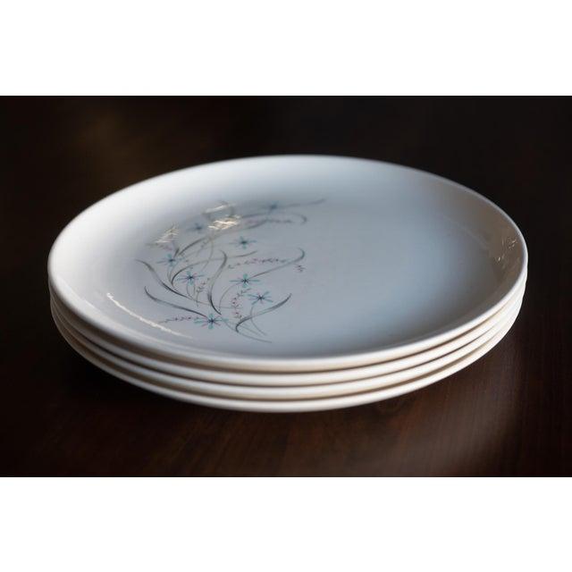 Ceramic 1960s Vintage Starburst Dinner Plates - Set of 4 For Sale - Image 7 of 7
