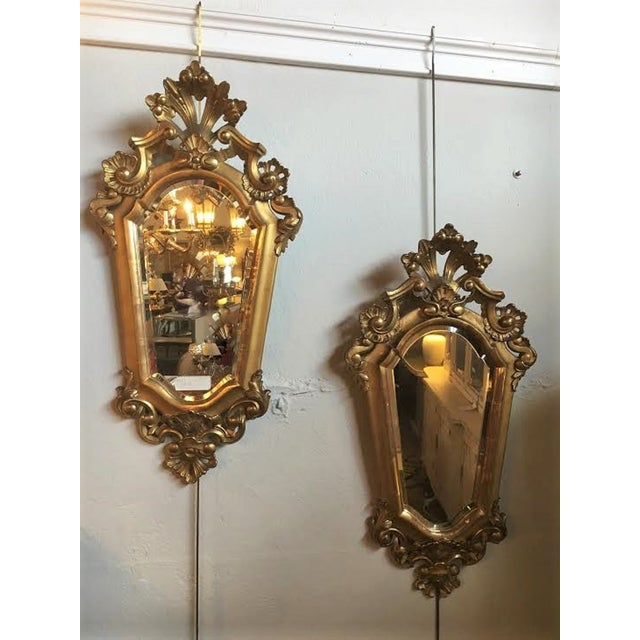 Italian Gilt Carved Mirrors - A Pair - Image 2 of 5
