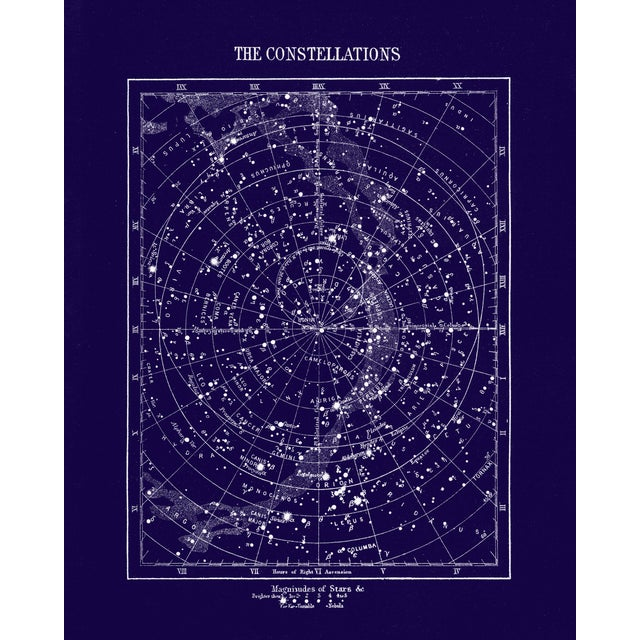 Vintage Constellations Print With Stars Unframed Blue For Sale