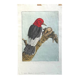 Benjamin B. Moore Hand Painted Red-Headed Woodpecker, Initialed in Plate For Sale
