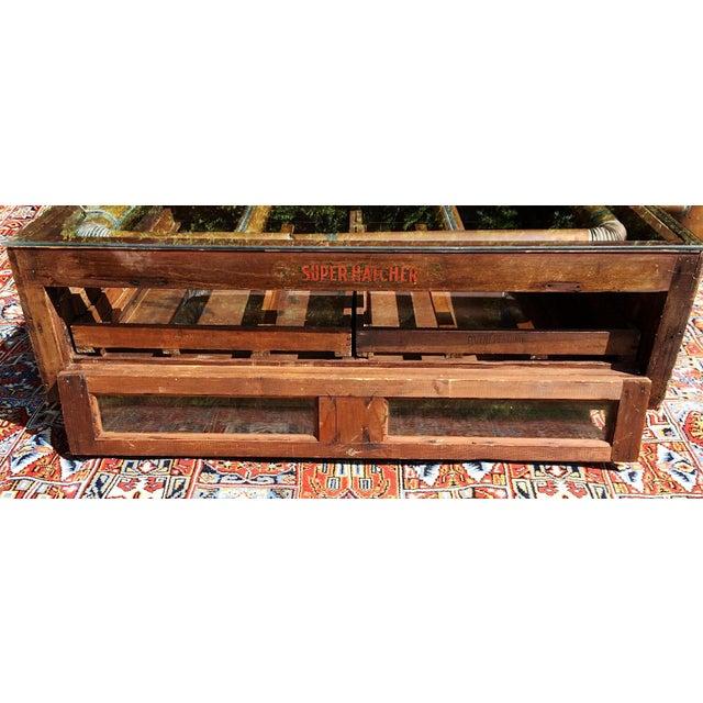 1920s Primitive Super Hatcher Farm Copper Steam Incubator Farmhouse Coffee Table For Sale - Image 5 of 10
