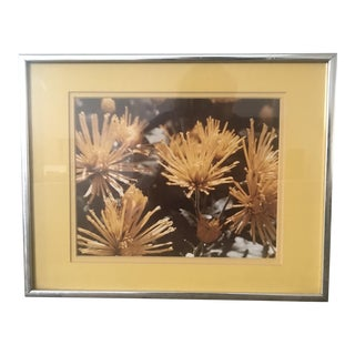 Mid-Century Yellow Flower Photo