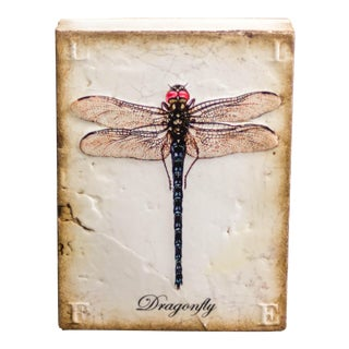 "Retired Sid Dickens ""Transformation"" Dragonfly Memory Block"