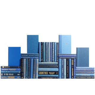 Modern Denim Book Wall : Set of Fifty Decorative Books