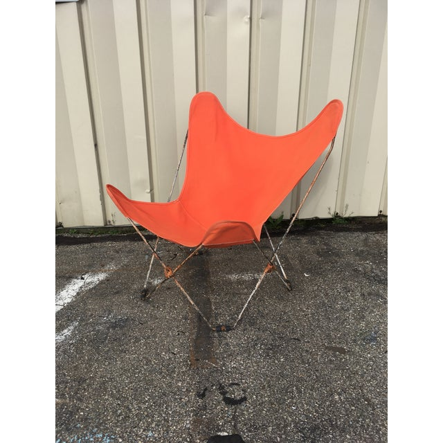 1950s 1950s Mid-Century Butterfly Chair For Sale - Image 5 of 11